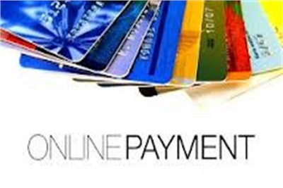 Online tax payment facility vision consulting offers an online payment