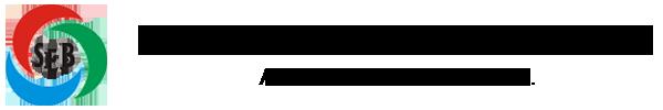 STERLING ENGINEERS & BOILERS PVT LTD