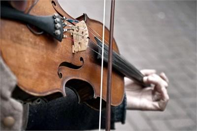 Violin Training