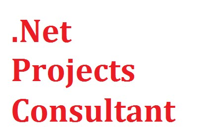 .Net Projects Consultant