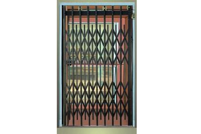 Collapsible Door Passenger Elevator  sc 1 st  Ariel Elevators Pvt. Ltd. & Collapsible Door Passenger Elevator Manufacturer in Pune | Ariel ...