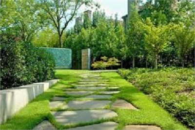 Construction and Landscape Projects