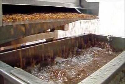 Raisin Dry Grape Process Machine