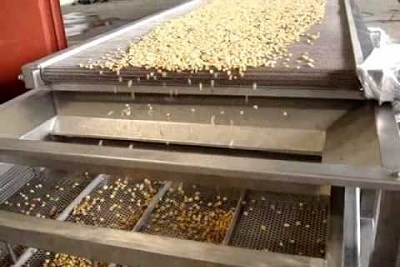 Sweet Corn Process Plant Machine