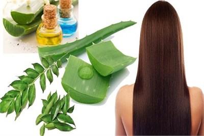 Ayurvedic Treatment for Hairloss