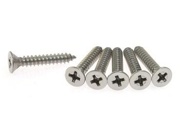 American Standard Screws