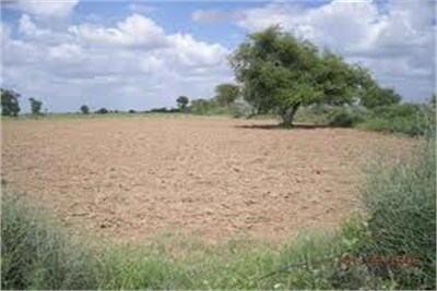plot available in nagpur