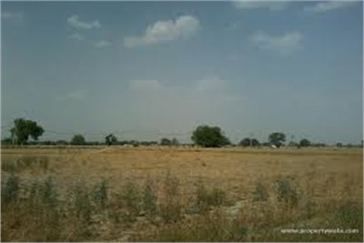AGRICULTURE LAND FOR SELL