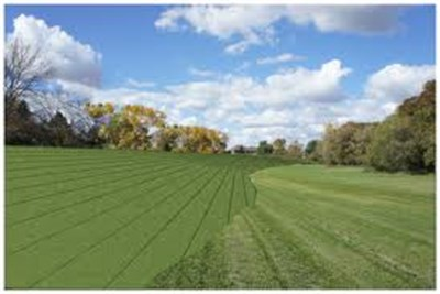 AGRICULTURE LAND FOR SELL AT NAGPUR