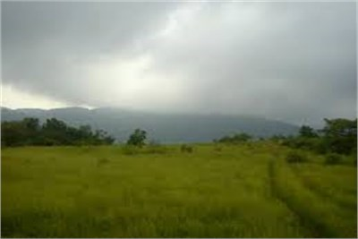 Agricultural land for sale at Butibori