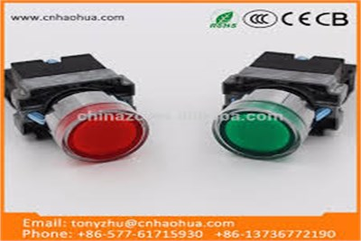LED Luminated Push Button 220V/24V