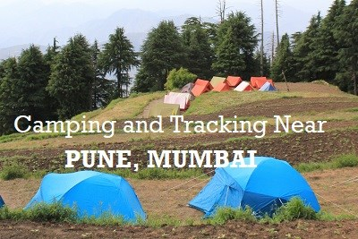 Camping and Tracking