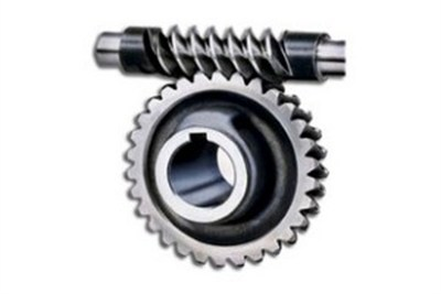 Worm and Worm Gears
