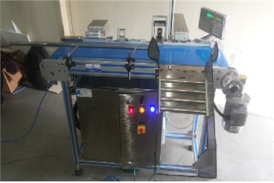 Belt Conveyor With Batch Code Printing and Vision System
