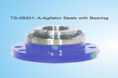Agitator Seal with Bearing