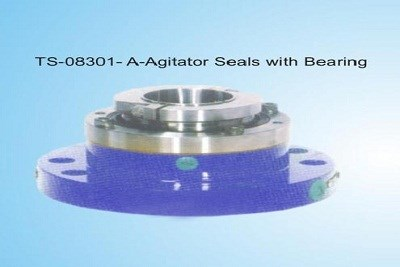 Agitator Seal with Bearing
