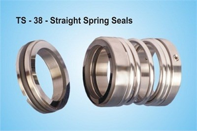 Straight Spring Seals