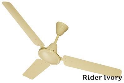 Rider Ivory