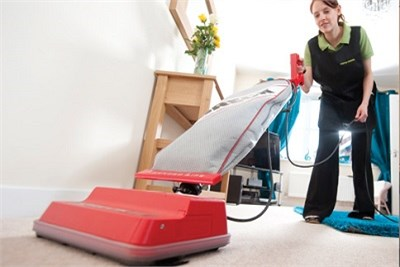 domestic housekeeping services