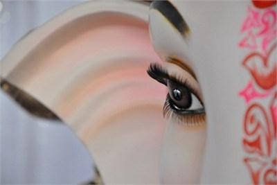 Ganesh Lenses