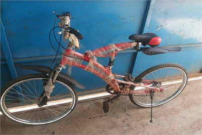 6 Speed Gear Cycle