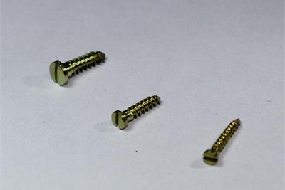 Mini Bone Screw 2